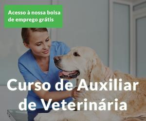 Curso de auxiliar de veterinária-Master D